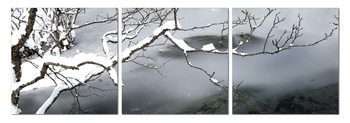 Winter Snapshot Mounted Art Print