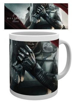 Destiny 2 - Hunter Solo Mug