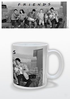 Friends - Lunch On A Skyscraper Mug