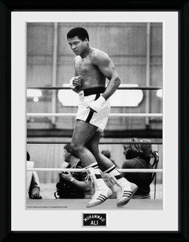 Muhammad Ali – Training 30x40cm Collector Print Poster encadré en verre