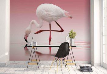 Murais de parede Flamingo