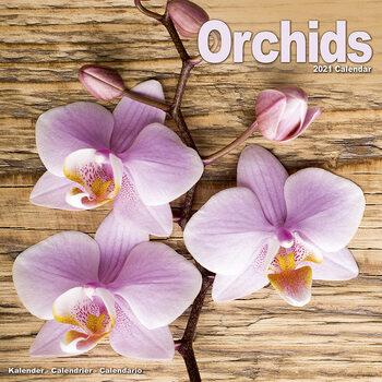 Calendar 2021 Orchids