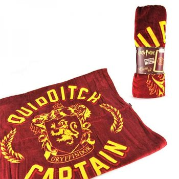 Harry Potter - Quidditch Captain
