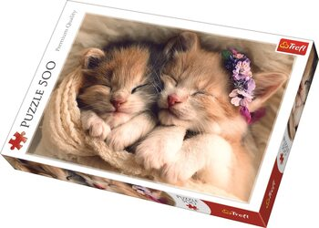 Puzzle Sleeping Kittens