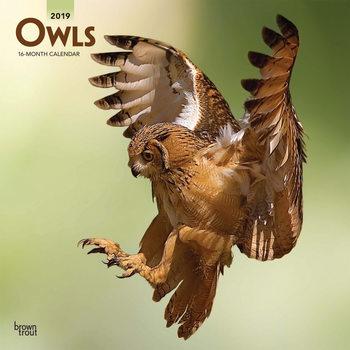 Calendar 2022 Owls