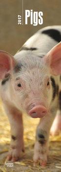 Calendar 2021 Pigs