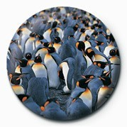 Pins PENGUINS