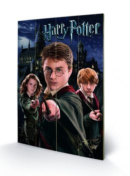 Pintura em madeira Harry Potter – Harry, Ron, Hermione