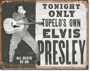 Placa de metal  ELVIS PRESLEY - tupelo's own