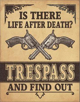 Placa de metal Life After Death?