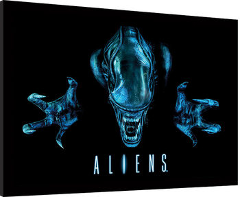 Framed poster Aliens - Out of the darkness