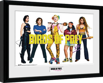 Framed poster Birds Of Prey: And the Fantabulous Emancipation Of One Harley Quinn - Group