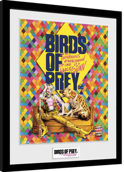 Birds Of Prey: And the Fantabulous Emancipation Of One Harley Quinn - One Sheet Hyena Framed poster