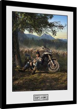Framed poster Days Gone - Key Art