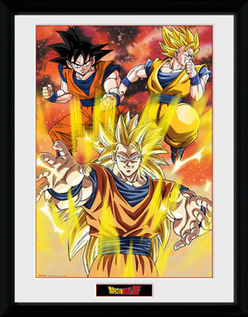 Dragon Ball Z - 3 Gokus plastic frame