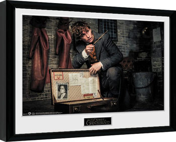 Framed poster Fantastic Beasts 2 - Newt Suitcase
