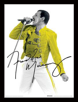 Freddie Mercury - Yellow Jacket Framed poster