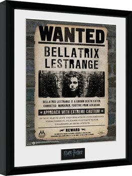 Harry Potter - Bellatrix Framed poster