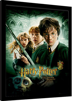 Harry Potter - Chamber Of Secrets Framed poster