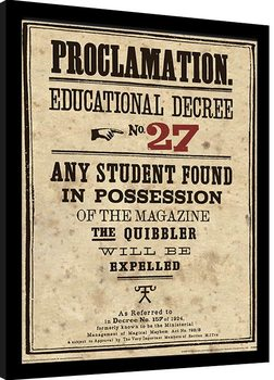Harry Potter - Educational Decree No. 27 Framed poster