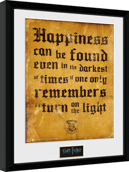 Harry Potter - Happiness Can Be Framed poster