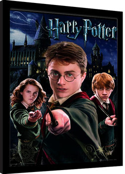Harry Potter - Harry Ron Hermione Framed poster