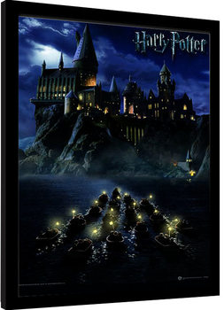 Harry Potter - Hogwarts School Framed poster