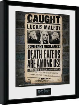 Harry Potter - Lucius Framed poster