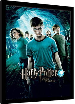 Harry Potter - Order Of The Phoenix Framed poster