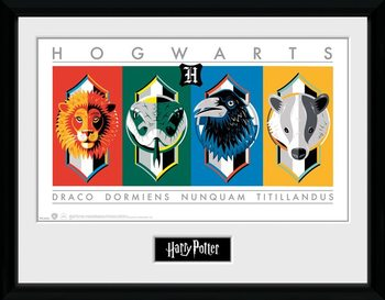 Harry Potter - Sigils Framed poster
