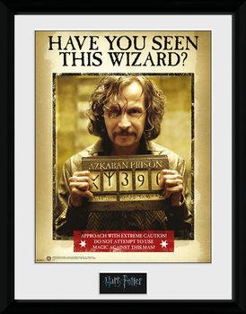 Harry Potter - Sirius Azkaban Framed poster
