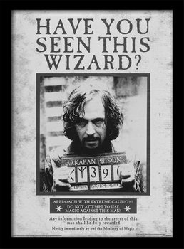 Harry Potter - Sirius Wanted Framed poster