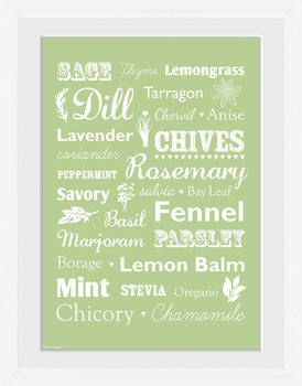 Herb - Types Framed poster