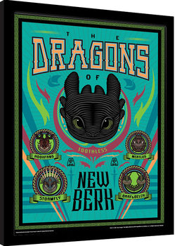 How To Train Your Dragon - The Dragons Of New Berk Framed poster