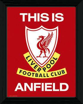 Liverpool - This Is Anfield Framed poster