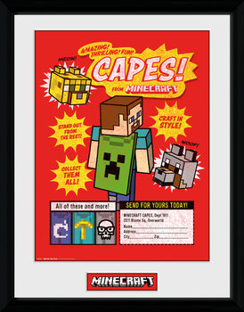 Minecratf - Collect Them All Framed poster