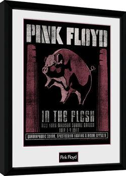 Pink Floyd - 1977 Framed poster