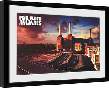Pink Floyd - Animals Framed poster