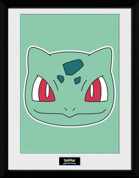 Pokemon - Bulbasaur Face plastic frame