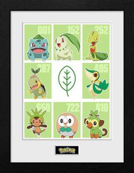Framed poster Pokemon - First Partner Grass