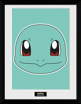 Pokemon - Squirtle Face plastic frame