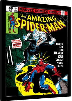 Framed poster Spider-Man - Black Cat