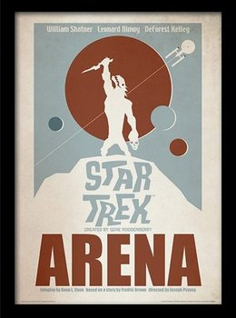 STAR TREK - arena Framed poster