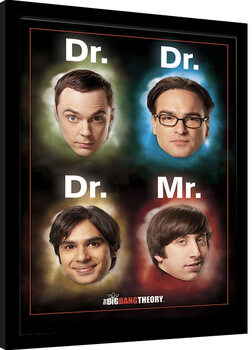 Framed poster The Big Bang Theory - Dr Mr