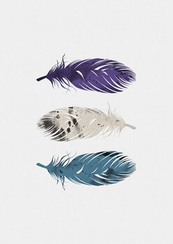 Illustration Blue Purple White Feathers