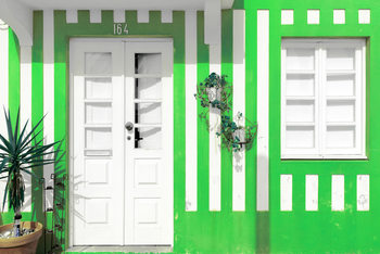 Art Print on Demand Costa Nova Green Facade