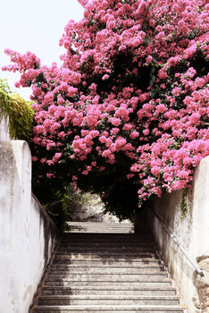 Art Print on Demand Flowery Staircase