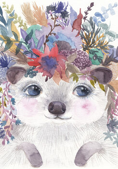 Illustration Hedgehog
