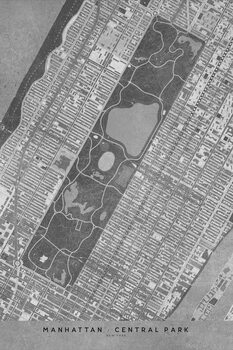 Illustration Map of Manhattan Central Park in gray vintage style