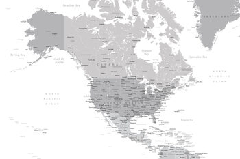 Illustration Map of North America in grayscale